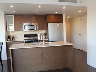 Comfy 2BD/2BA Apt near Ramada Hotel Airport, Richmond