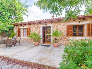 CAN BOSCO DOTZE - Villa for 12 people in Son Carrio