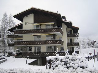 Central spacious Chalet apartment, no car required, Klosters
