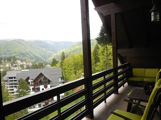 Relaxing Balcony Apartment, Sinaia
