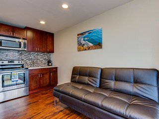 Oceanview, newly remodeled condo close to the beach - dogs welcome!