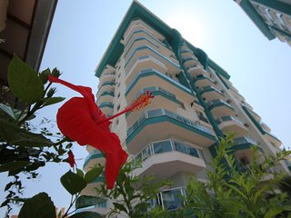 1 B/R Apartment Angels Home Marwan