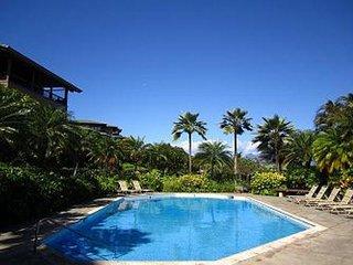Kapalua Ridge Villa Gold! Enchanting, Fresh, Contemporary!