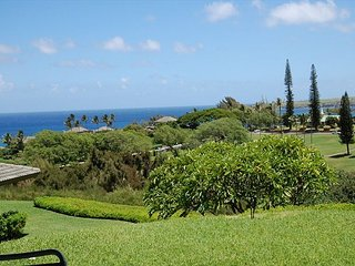 Kapalua Ridge Villa Ocean Views From Every Room!
