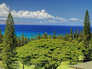 Kapalua Golf Villa Gold! Breathtaking Ocean Views!