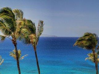 Kapalua Bay Villa Stunning Designer Penthouse endless 180* Ocean Views!