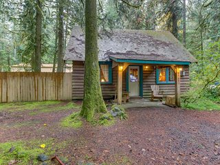 Quintessential dog-friendly cabin in the woods, within short walk of the river!, Rhododendron