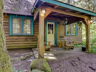 Quintessential dog-friendly cabin in the woods, within short walk of the river!
