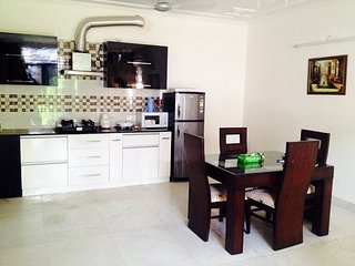 Classy 1 Bedroom Apartment in Green Park, Nueva Delhi