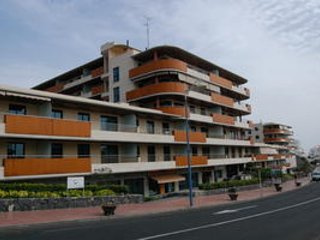Sunny apartment on the ocean, Puerto de Santiago