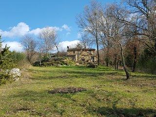 Casa Viola Traumhaftes Rustico in alleinlage