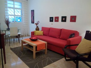 Center with Free Parking apartment in Casco Antiguo with airconditioning (warm
