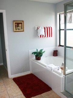 Master Bathroom Garden tub