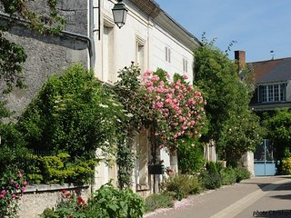 Charming old house in GardenVillage in Loir Valley