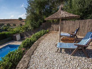 Deckchairs and pool with garden