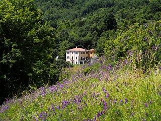 CasaMilleNoveCento - camere e appartamenti vacanze
