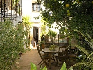 Spacious historic home, with gourmet kitchen and a well tuned piano. Sleeps 6, Jimena de la Frontera
