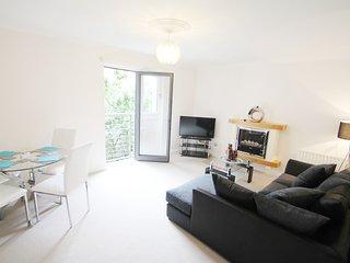 Modern Short Term Holiday Apartment - SECC HYDRO, Glasgow