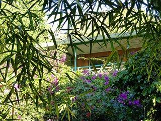 Spacious appartment ocean & garden views