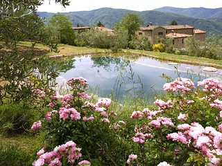 Stunning view villa with bio swimming pool, Citta di Castello