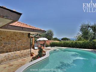 Villa Castiglione 10