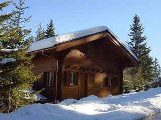 Beautiful Swiss Chalet in the 4 Valleys, Thyon
