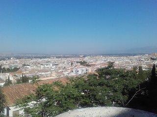 Apto. Completo / 3 hab. / wi fi / Centrico / Al lado Alhambra. a 18 min centro.