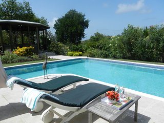 THE VILLA : Luxury villa , large pool, ocean views, Saint David's