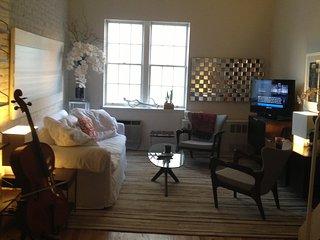 Hot Triplex One-Bedroom, One Bath Loft Style Apt., New York