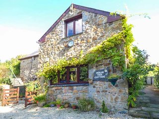 MEDLAR TREE COTTAGE, detached, woodburner, hot tub, swimming pool, sauna, Blisla