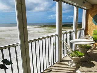 PARADISE/TIKI HUTS /PRIVATE BEACH/NOV SPE 775 WK, Fort Myers Beach