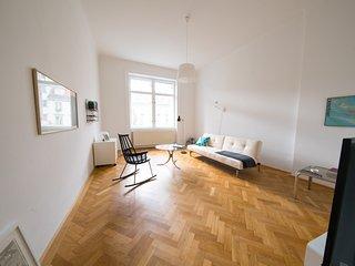 Helles, geraumiges Innenstadt Appartement (2 SZ)