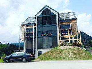ECO Boutique Hotel AMS Beagle - studio, Zgornje Gorje
