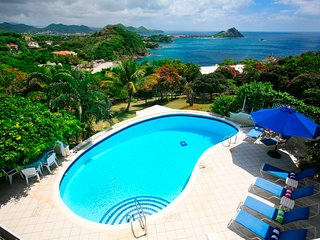 Wild Orchid - St Lucia, Gros Islet