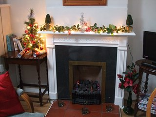 Come for Christms or New Year in our cosy little  Fir Tree cottage