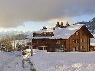 3 bedroom Apartment in Arveyes, Vaud, Switzerland : ref 5058972