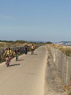 The cycle path between Marseillan Plage and Sete