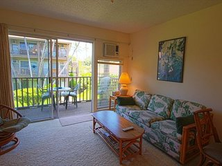 Kona Isle C21 2nd floor, Oceanview, AC, Amazing Price!, Kailua-Kona