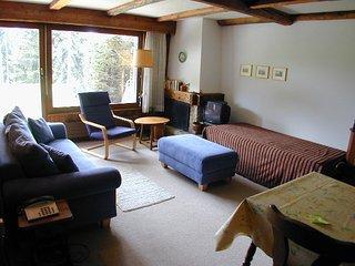 Appartement 2 pièces proche de Savoleyres