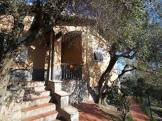 Villa Sara #10321, Finale Ligure