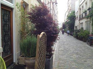 Loft 47m² + terrasse dans un joli passage parisien, Paris