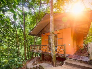 Bungalow-Rainforest Surrounding