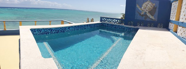 Roof Pool - Spectacular for 14 People.  Best Snorkeling & Kayaking in the Bay!