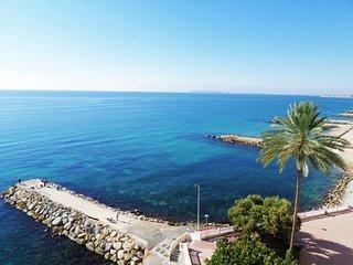 450616 - Mediterranean Stare, Alicante