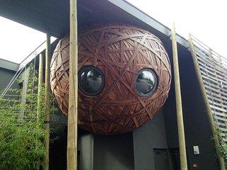 Un nid, une chambre dans un écoquartier à Tournai