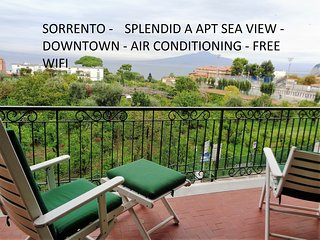 splendid (A) apt seaview downtown freeWiFi for 6 p