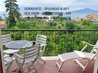 splendid (B) apt seaview downtown freewifi for 8 p