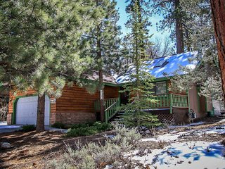 1454-Pines and Needles, Big Bear Region