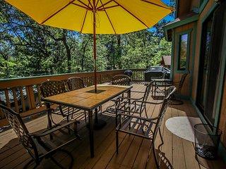 Tree Top Hideaway Cabin~Treed Decks~Away From It All~Foosball~Darts~WiFi~Den~