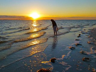 Sanibel Heaven, Sanibel Island